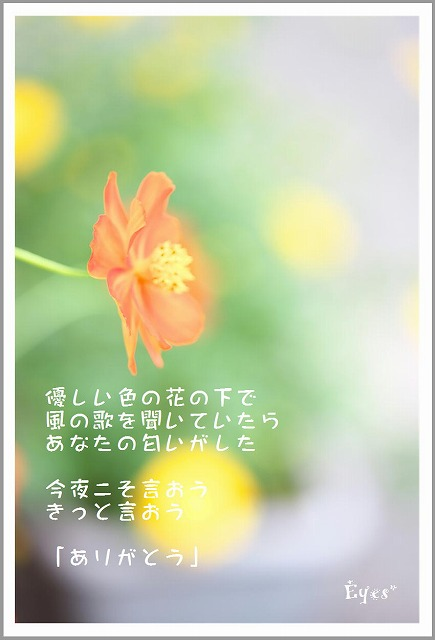 s-ありがとう.jpg
