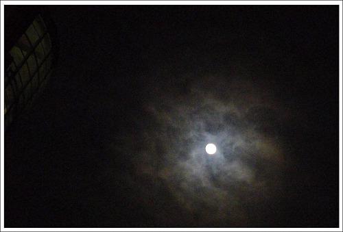 wL2011-01-18.jpg